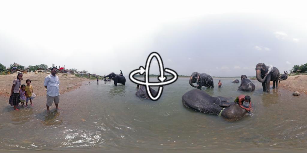 Le parc de Chitwan